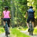 Podczas wycieczki rowerowej